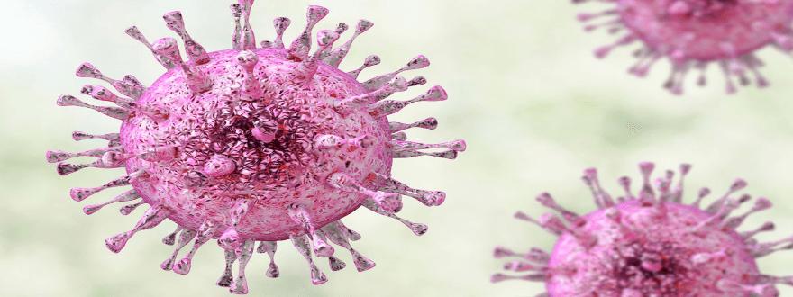 герпес-вирусные инфекции