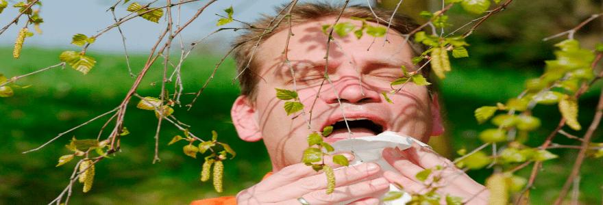 механизм_запуска_аллергии